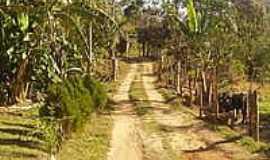 Desterro do Melo - Estrada-Foto:antoniodacostalima [Panoramio]