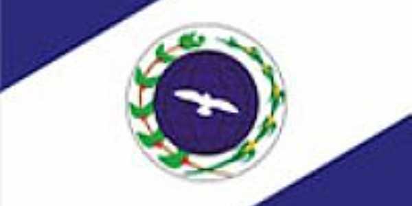 Bandeira de Divinésia - MG