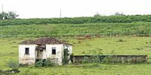 Casa no interior-Foto:Altemiro Olinto Cris…