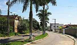 Divisa Nova - Avenida Canton