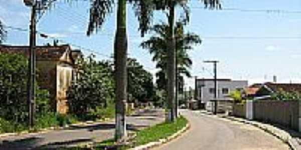 Avenida Canton