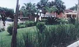 Dona Euzébia - Projeto Adote um Jardim