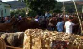 Dores de Campos - carregando milho, Por Zema
