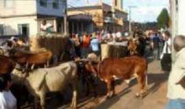Dores de Campos - Desfile de carros de bois, Por Zema