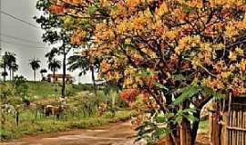 Dores do Indaiá - Dores do Indaiá-MG-Zona rural-Foto:Adilson Lopes Oliveira-Facebook