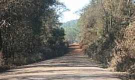 Engenheiro Correia - Estrada rural-Foto:Geraldo Salomão