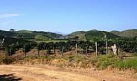 Ervália - Ervália-MG-Vista da Represa da Usina-Foto:Amarildo Souza