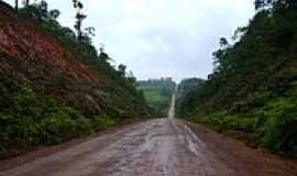 Oiapoque - Estrada BR 156-Foto:Alan.Kardec