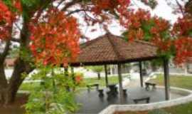 Florestal - Pra�a Ver. Jos� Gon�alves de Oliveira por Wellington Diniz, Por wcd.florest@hotmail.com
