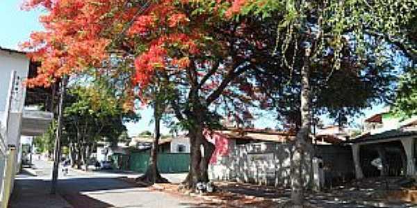 Imagens da cidade de Florestal - MG