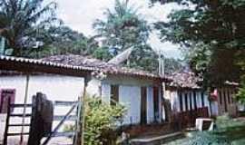 Florestina - Casario em Florestina-Foto:Glaucio Henrique Cha…