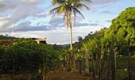 Fronteira dos Vales - Fazenda Miragem-Foto:Eugenio Ribas [Panoramio]