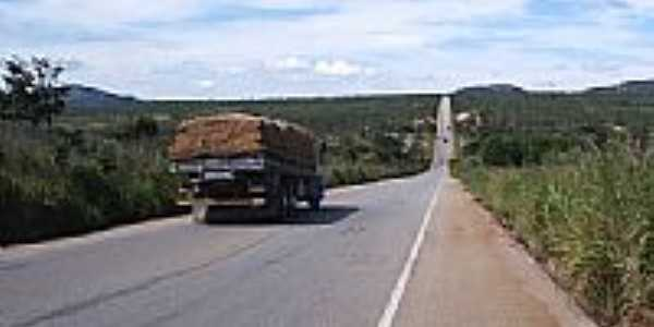 Fruta de leite rumo a Bahia norte e minas por antonioser