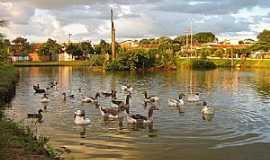 Frutal - Frutal-MG-Lago do Parque Municipal dos Lagos-Foto:Altemiro Olinto Cristo