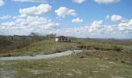 Funchal - Estrada em área rural-Foto:luizalvessg@bol.com.…