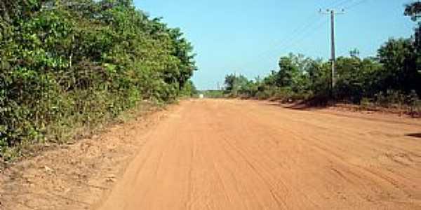 São Joaquim do Pacuí-AP-Estrada de terra-Foto:C.Freiberg.O