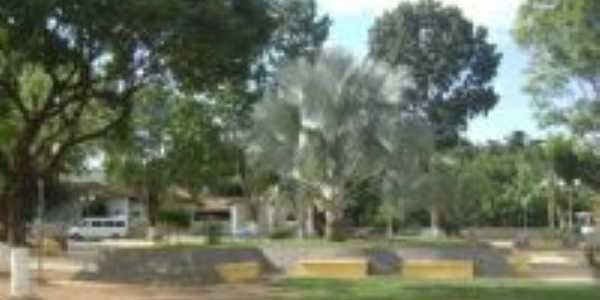 Palmeira Azul na Praça Santo Antonio, Por Pousada e Restaurante do Marquinhos