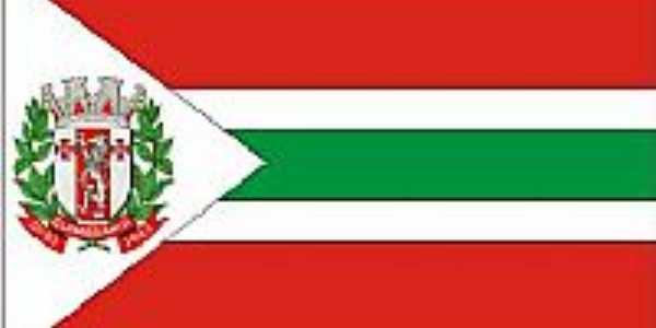 bandeira de Guimarânea