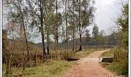 Hermilo Alves - Ponte em área rural-Foto:trekearth.