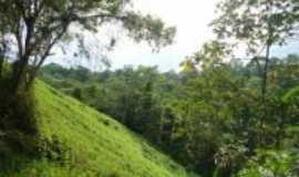 Serra do Navio - Abismo da estrada da colonia e serra, Por wirley almeida santos