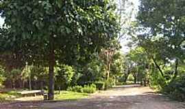 Ipatinga - Viveiro Municipal foto Marcos
