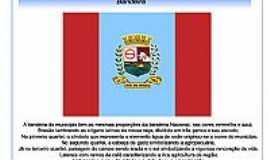 Iraí de Minas - bandeira de Iraí de Minas - MG