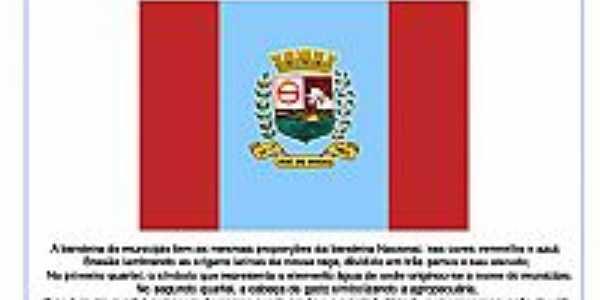 bandeira de Iraí de Minas - MG