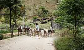 Itabirinha de Mantena - Imagem rural-Foto:decio coutinho