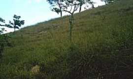 Jaguaraçu - Solitude