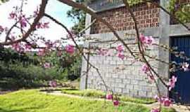 Jana�ba - Jana�ba-MG-Flores ao lado do pr�dio da Universidade-Foto:FSathler