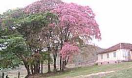 Jeceaba - Fazenda Centenária Salto do Paraopeba