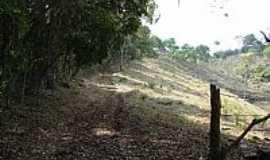 Jeceaba - Trilhas ecológicas na Serra do Gambá