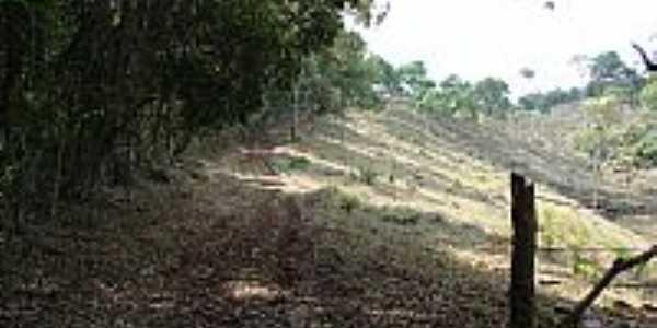 Trilhas ecológicas na Serra do Gambá