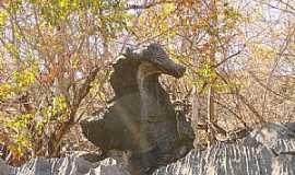 Jequitaí - Jequitaí-MG-Cavalo Marinho no Curral de Pedras-Foto:MuriloGeovani