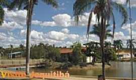 Jequitib� - Lagoa Pedro Saturnino