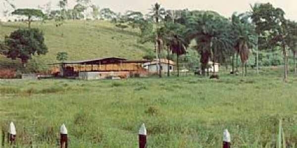 Abrantes-BA-Área rural da Vila-Foto:Paulo Pedro P. R.Costa