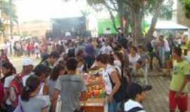 Jordânia - Projeto contra a Dengue, Por Isadora Gomes.