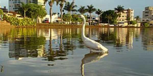 Lagoa Formosa-MG-Vista da Lagoa-Foto:Olhares - Sapo