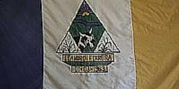 Bandeira de Leandro Ferreira-MG