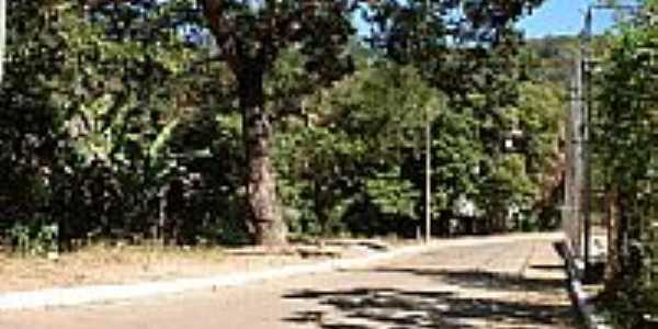 Rua Quadra 01 em Leme do Prado-MG-Foto:Enio FSR