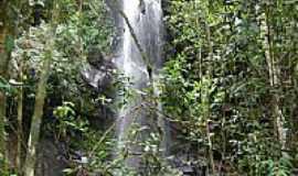 Lima Duarte - Cachoeira da Boa Vista,Queda da Mata, em Lima Duarte-MG-Foto:Marcio Lucinda