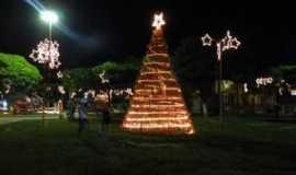 Lontra - Praça Princesa Isabel, Natal 2014., Por Ingrid Naiara