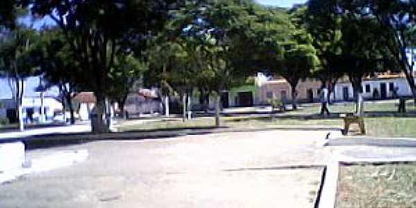 Lontra - MG