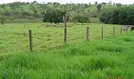 Luz - Área de Rodízio de Pastagens em Luz-MG-Foto:Moises de BarrosTele…