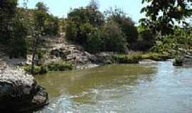 Machacalis - Rio Alcobaça