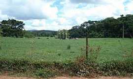 Marilac - Marilac-MG-Pastagem na beira da estrada-Foto:Izaides