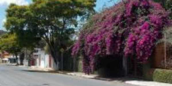 rua Joaquim Aguiar em mateus leme, Por Isa