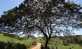 Mathias Lobato - Mathias Lobato-MG-Estrada em área rural-Foto:Rubinho Barroso