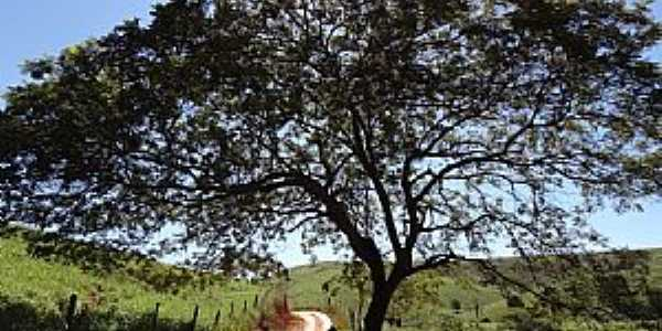 Mathias Lobato-MG-Estrada em área rural-Foto:Rubinho Barroso