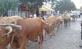 Medeiros - Desfile de Carro de Boi - Festa do Produtor Rural por Andreferis